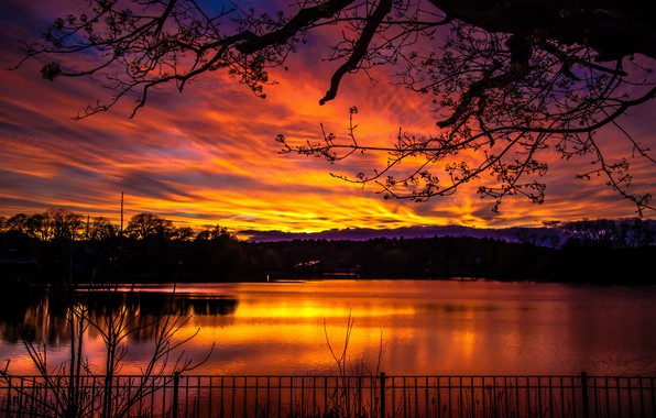 Picture colorful, dark, sky, trees, nature, sunset, lake, landscapes, blur, dusk, reflection, branches, 4k ultra hd …