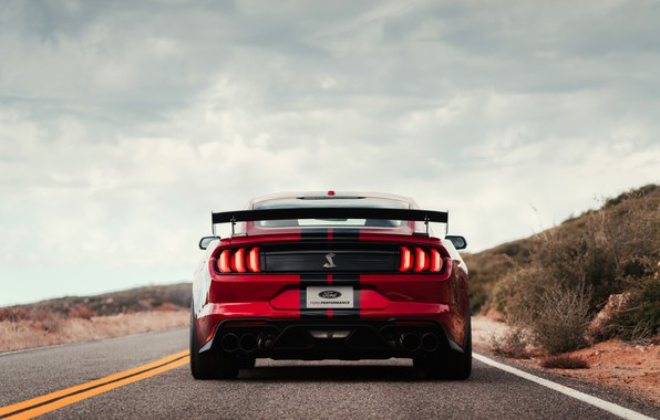 Picture Mustang, Ford, Shelby, GT500, bloody, feed, 2019
