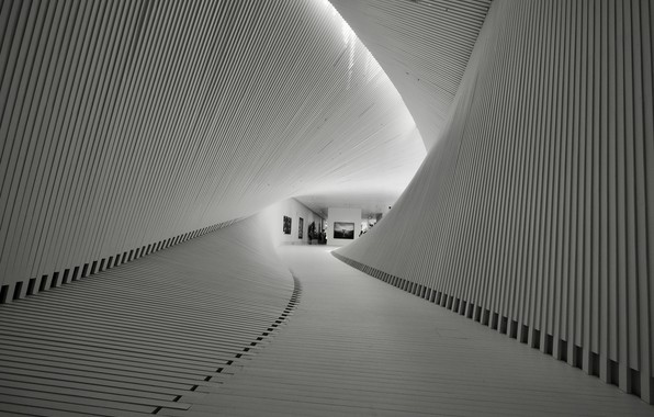 Picture gallery, gallery, vanguard, Svetlana Povarova Ree, avant-garde