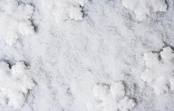 Picture winter, white, snow, snowflakes, background, white, winter, background, snow, snowflakes