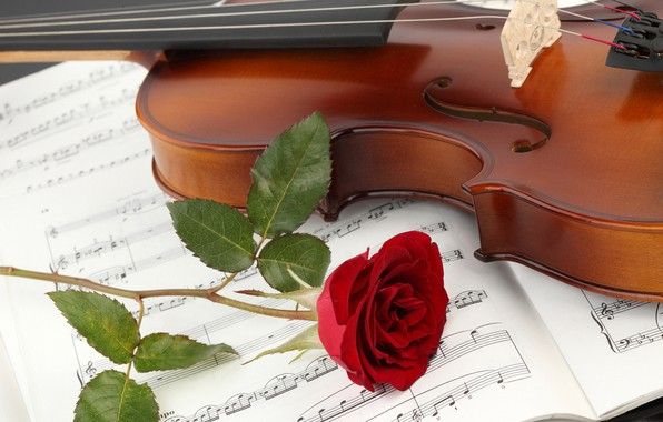 Photo Wallpaper Flower Close Up Notes Violin Rose Notebook