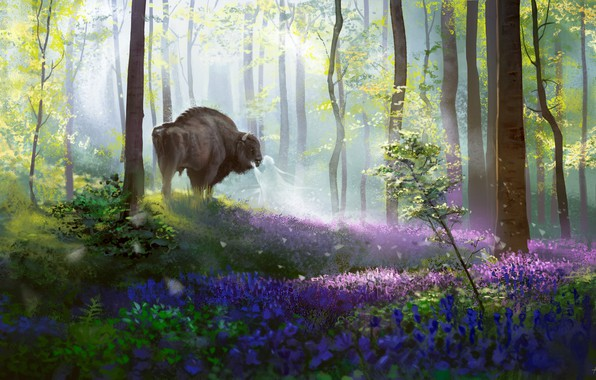 Picture forest, nature, spirit, fantasy, art, Buffalo, Alex Shiga, Bison's daydream