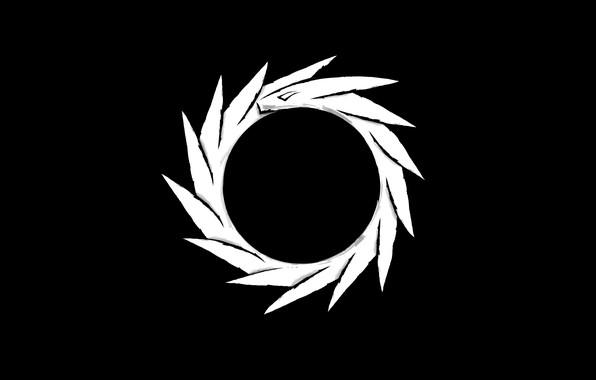 Picture white, black, dragon, orbit