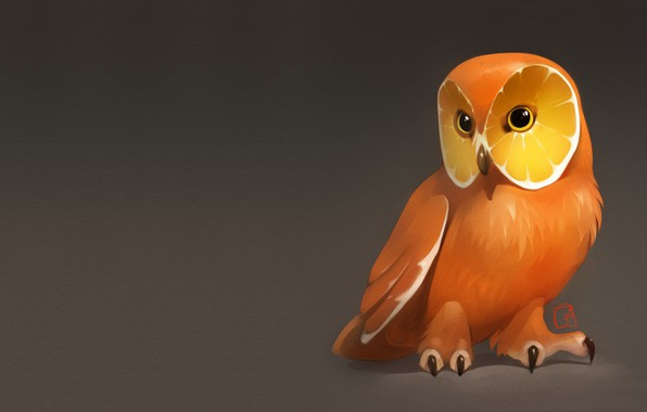 Picture owl, orange, art, fruit, art, Alexander Khitrov, GaudiBuendia