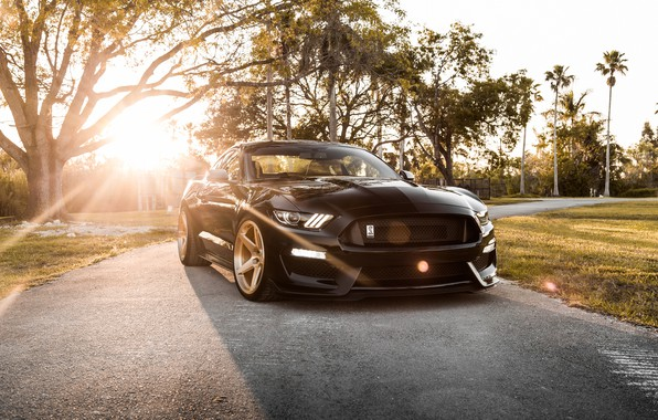 Picture Mustang, Ford, Shelby, GT350, Ford Mustang Shelby GT350