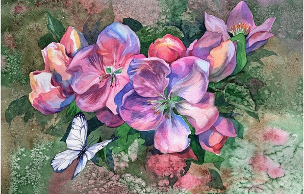 Picture flowers, background, butterfly, picture, watercolor, painting, Apple blossoms, the watercolor drawing, the blur of colors