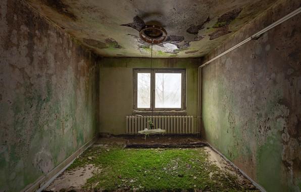 Picture room, interior, window