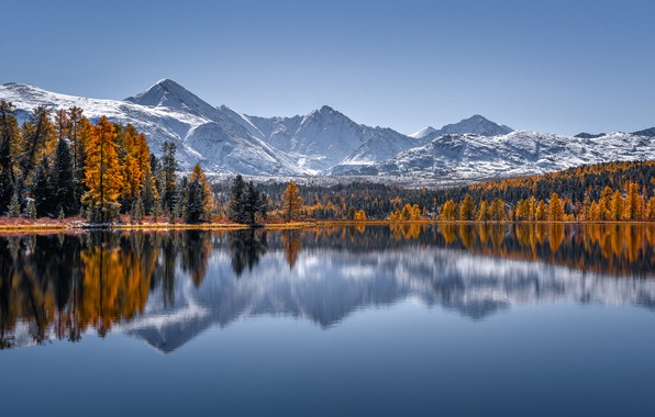 Picture autumn, forest, trees, mountains, lake, reflection, Russia, The Altai Mountains, The Altai mountains, Lake Cicely