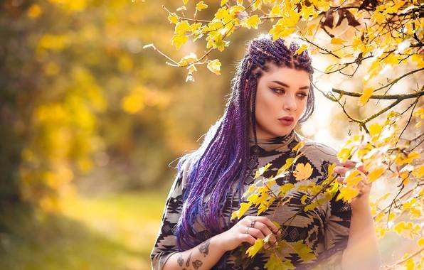 Picture autumn, girl, Mejika