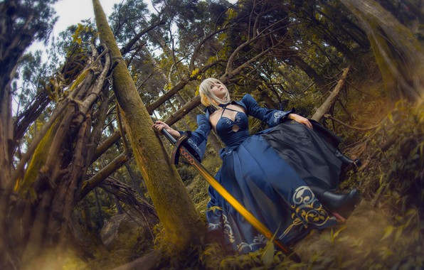 Picture forest, look, girl, trees, branches, blue, pose, style, weapons, thickets, trunks, sword, hands, blonde, costume, …