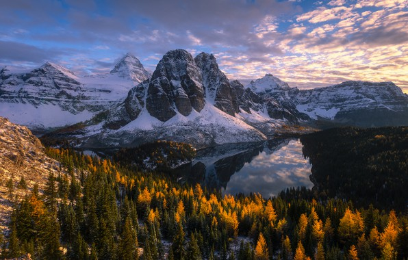 Picture autumn, forest, mountains, lake, Canada, Canada, British Columbia, British Columbia, Mount Assiniboine, Canadian Rockies, Cerulean …
