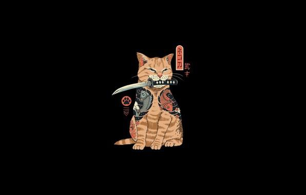 Picture minimalism, katana, Cat, samurai, ninja, digital art, artwork, black background, fantasy art, simple background, dagger