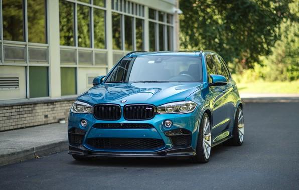 Picture BMW, Blue, Predator, X5M, Sight, F85