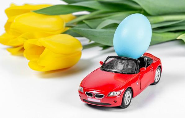 Picture flowers, egg, Easter, tulips, white background, machine, yellow tulips, krashenka