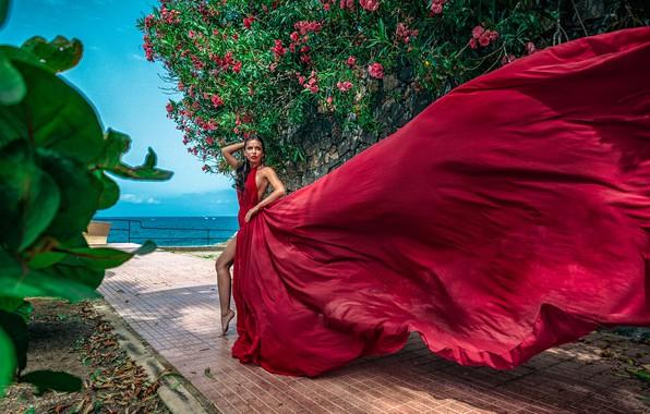 Picture girl, pose, the wind, dress, Ilya Tkachev