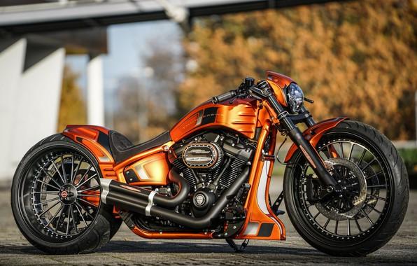 Picture Harley-Davidson, Custom, Thunderbike, FXBRS, Gp-Style