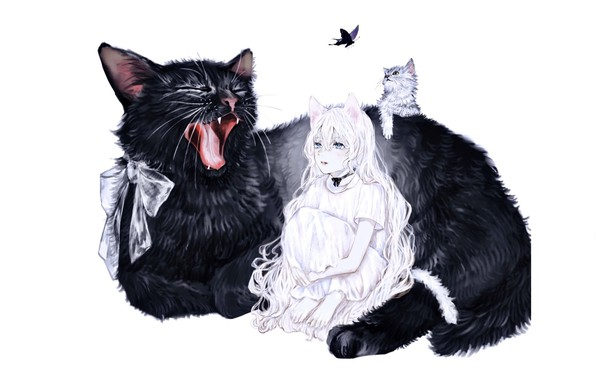 Picture kitty, butterfly, barefoot, tail, white background, huge, blue eyes, bow, yawns, thoughtful girl, black cat, …