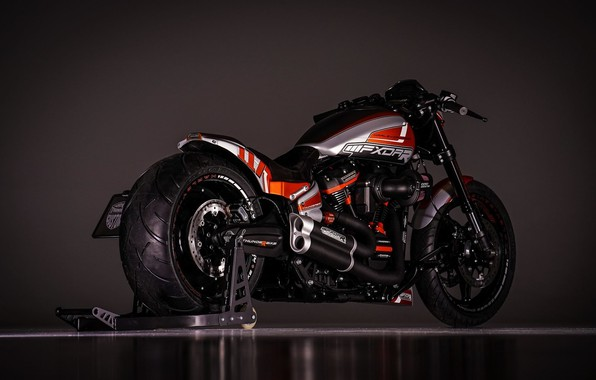 Picture Harley-Davidson, Custom, Thunderbike