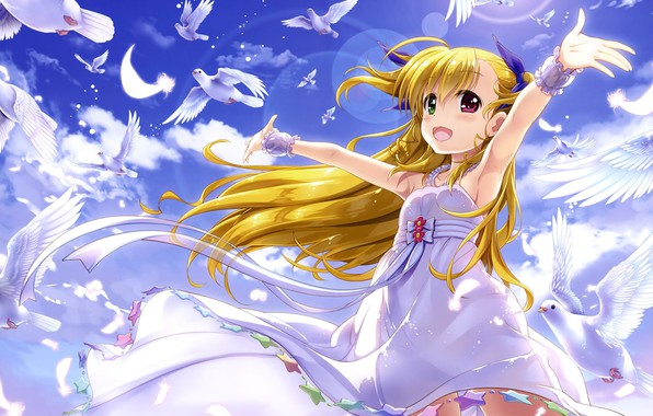 Picture The sky, Clouds, Birds, Girl, Pigeons, Mahou Shoujo Lyrical Nanoha