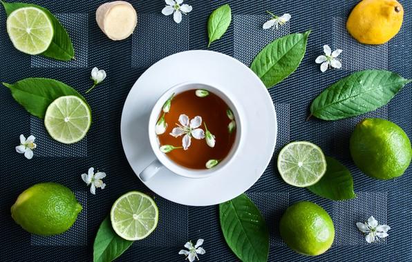 Picture flower, lemon, tea, Cup, lime
