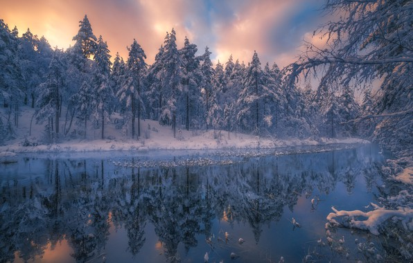 Picture winter, nature, trees, RINGERIKE, Ole Henrik Skjelstad, ate, Norway, landscape, river, forest