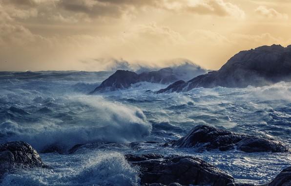 Picture sea, wave, storm, shore
