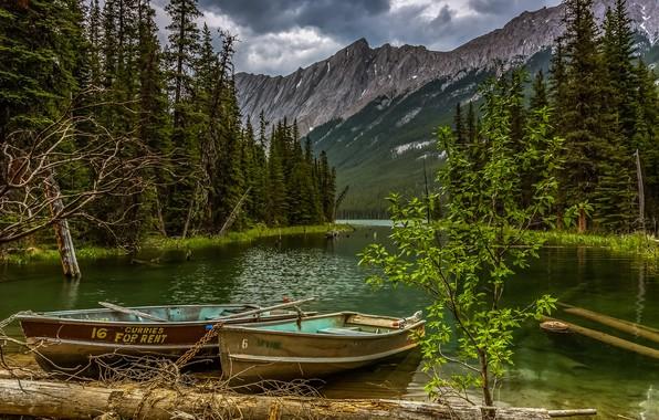 Picture landscape, mountains, clouds, nature, lake, boats, Canada, Jasper, forest, logs, national Park, National Park, Jasper
