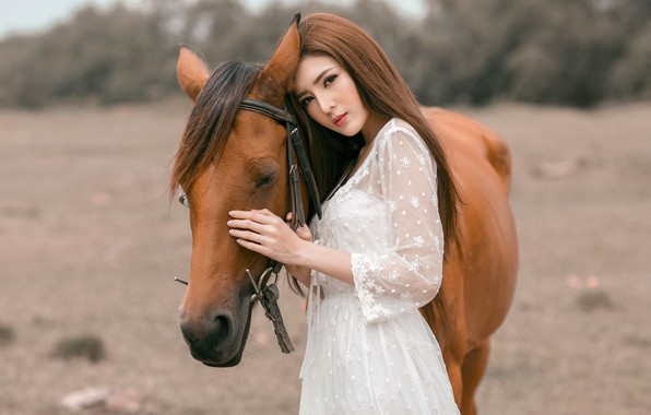 Picture eyes, look, face, girl, nature, face, background, each, horse, horse, portrait, hands, friendship, profile, brown …