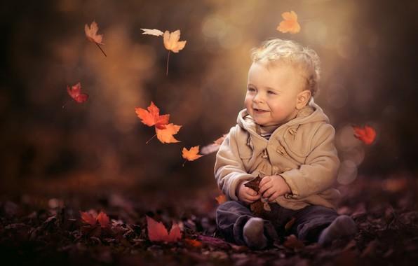 Picture autumn, leaves, nature, boy, baby, jacket, child, bokeh, pants, Paul Webb