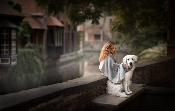 Picture street, dog, girl