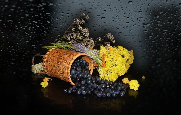 Picture blueberries, berry, the dried flowers, Still life, photo Elena Anikina