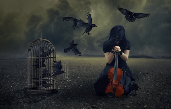 Picture girl, violin, cell, crows
