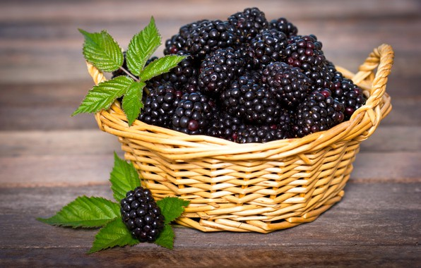 Picture leaves, close-up, table, basket, berry, BlackBerry, bokeh