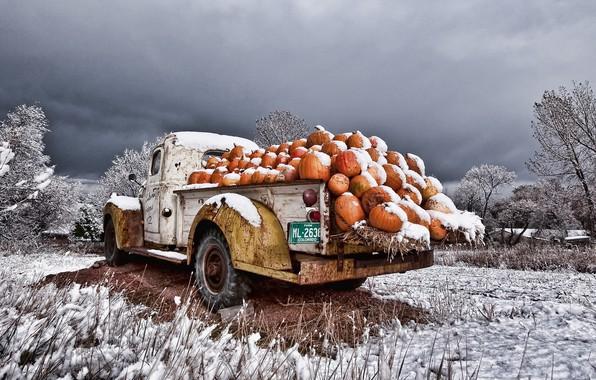 Picture machine, snow, pumpkin