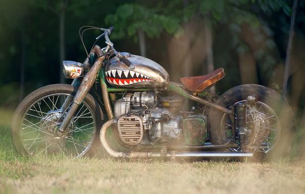Picture Custom, Motorbike, M-72, Rat bike