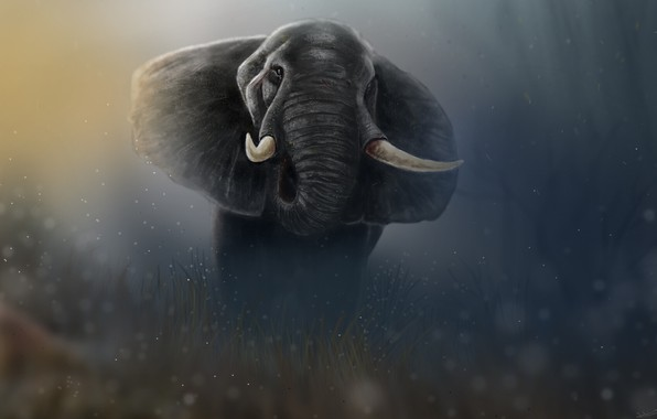 Picture Figure, Elephant, Art, Art, Animal, Elephant, Animal, Giant, Giant, Figure, Tusks, Tusks, Jaleel Muhammed, by ...