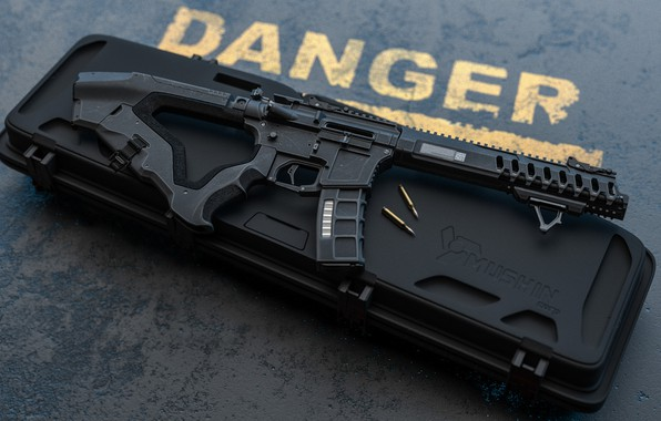 Picture rendering, weapons, gun, weapon, render, custom, custom, AR-15, assault rifle, assaul rifle, AR-15