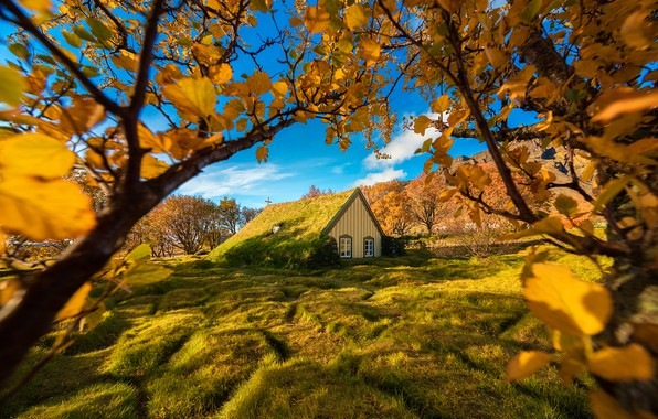 Picture autumn, trees, branches, Iceland, Iceland, The yard, Hof, sod Church, Turf Church