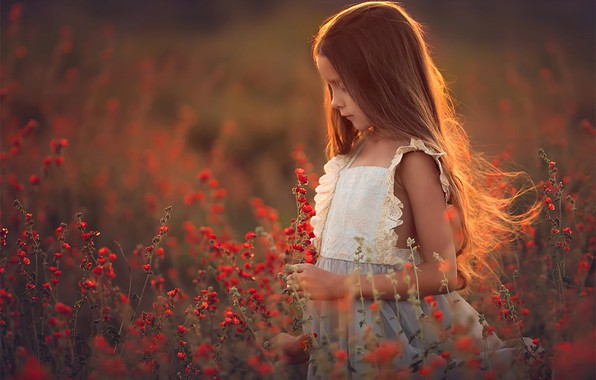 Picture field, flowers, Girl