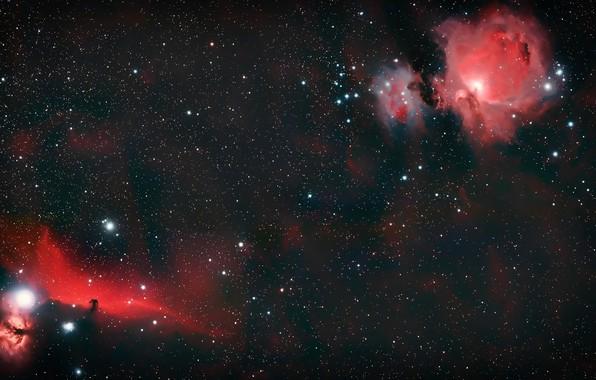 Picture space, universe, Galaxy, nebula, stars, cosmos, Horsehead Nebula