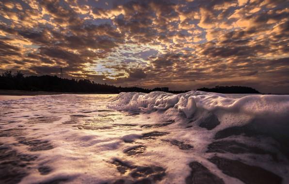 Picture sea, shore, wave