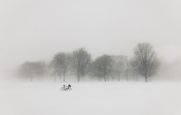 Picture field, snow, bike, fog