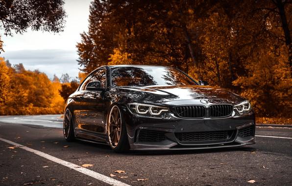 Picture Autumn, BMW, BMW, Car, BMW 4-Series, 4-Series