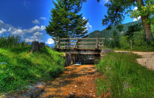 Picture greens, forest, the sky, grass, the sun, clouds, trees, mountains, bridge, stream, HDR, Germany, Bishop ...