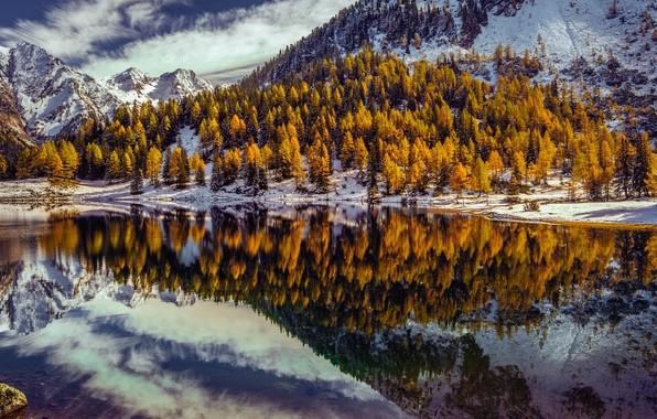 Picture trees, mountains, lake, reflection, Austria, Alps, Austria, Alps, Styria, Styria, Within the schladminger Tauern, Lake …