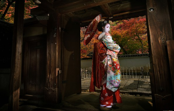 Picture girl, Japan, geisha