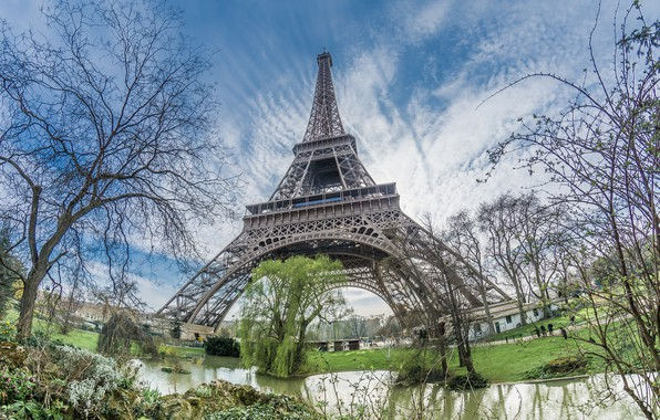 Picture trees, Paris, tower