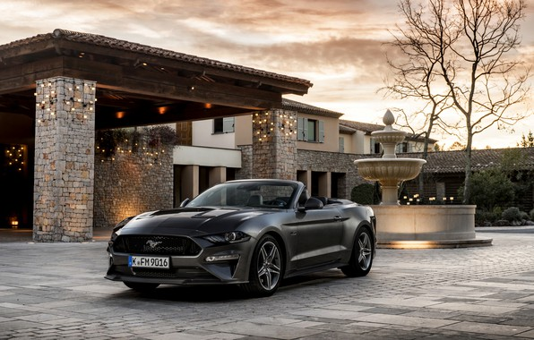 Picture house, Ford, fountain, convertible, 2018, dark gray, Mustang GT 5.0 Convertible