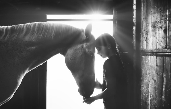 Picture light, horse, girl, light, girl, horse, Alessandro Cereda