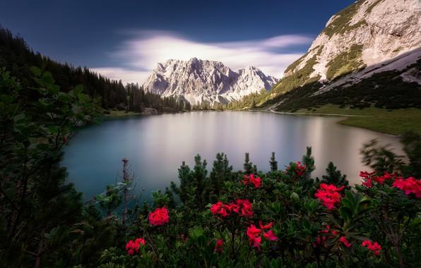 Picture mountains, lake, Austria, Alps, Tyrol, Seebensee